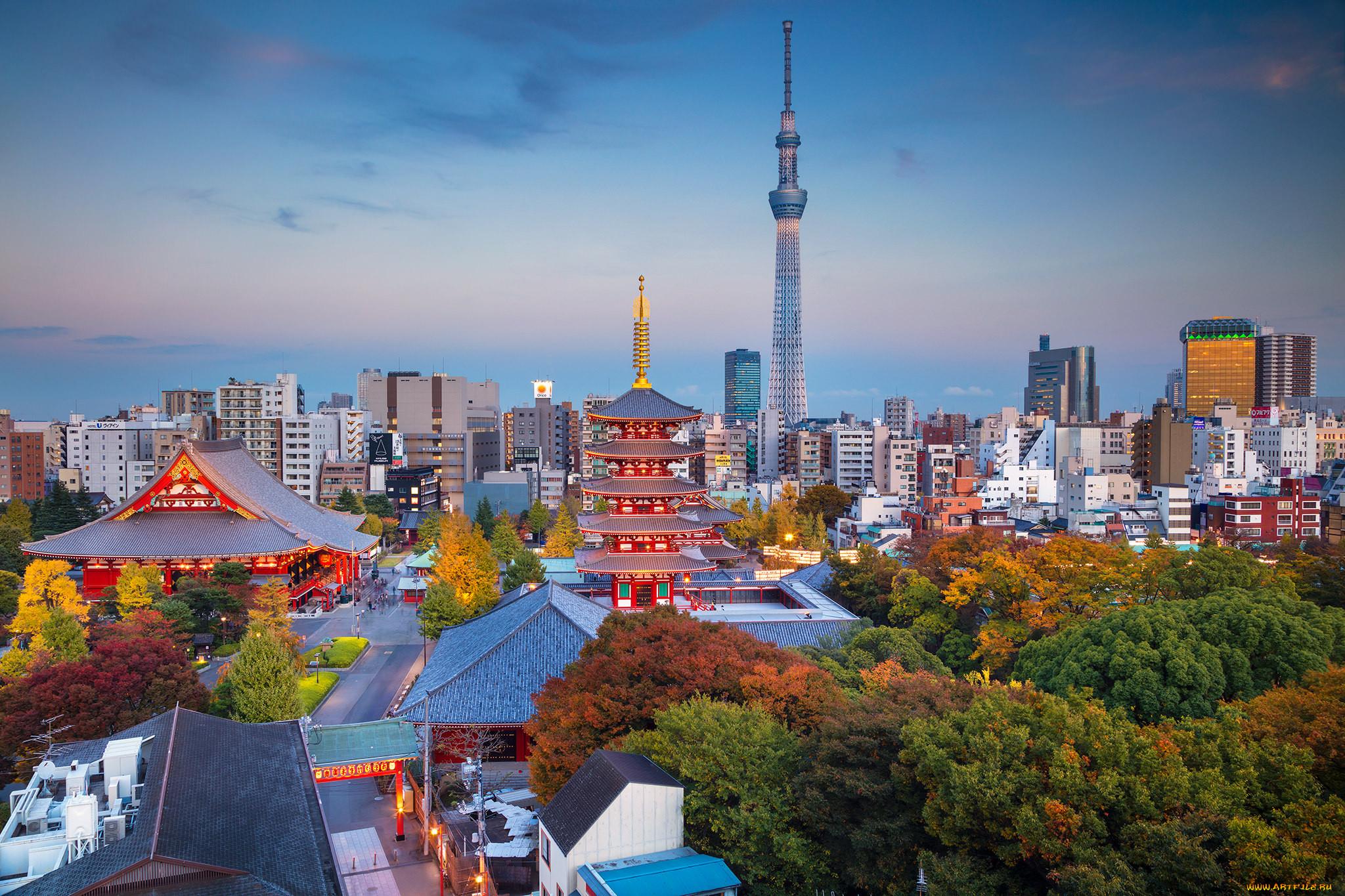 токио фотографии города сколько всего дней